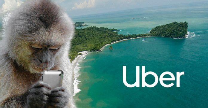 Uber Heads to the Beach!