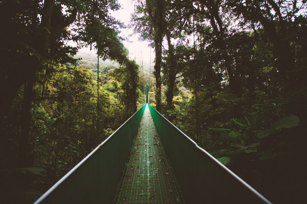 Lonely Planet's Best in Travel - Monteverde, Costa Rica (Photo by Ben Ostrower on Unsplash)
